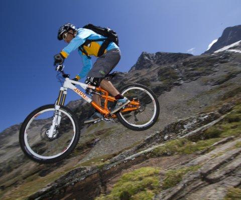 Mauro Franzi, Professional Mountainbikers